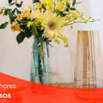Os melhores vasos